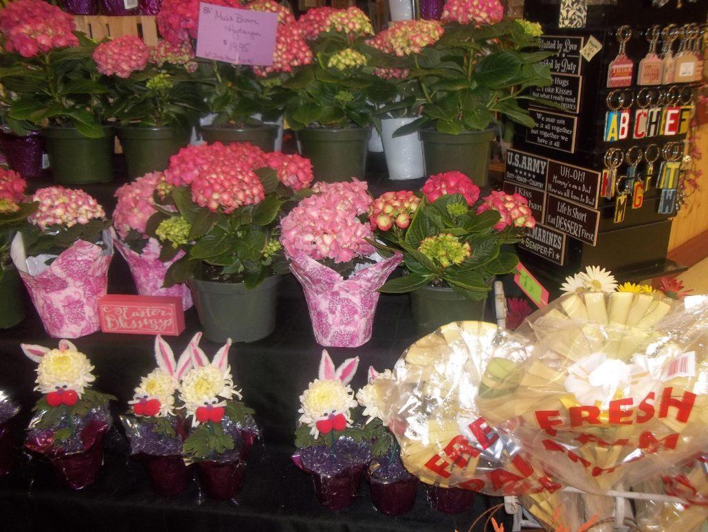 Amish Farmers Market Mullica Hill Novitas Flowers Gifts